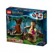 LEGO Harry Potter Zabranjena šuma: okršaj Grawpa i Umbridgeove (75967)