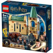 LEGO Harry Potter Hogwarts: Susret s Bundijem (76387)