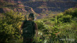 Tom Clancy's Ghost Recon Wildlands thumbnail